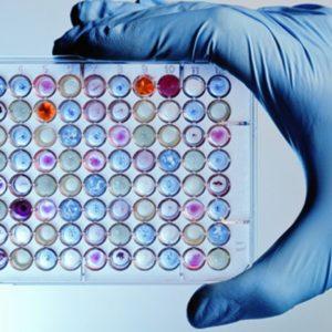 20170531-Lab-genomics-testing-shutterstock-33xdf11pvb22scrjhjgn40